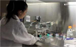 Printing the Human Body