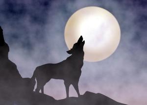 Austin Startup Week's Werewolves Vs. Villagers