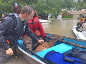 Bunker Labs and Irreverent Warriors in Austin and Other Veterans Mobilize to Rescue People Following Hurricane Harvey