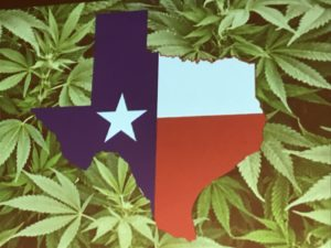 Pot Pioneers Gather in Austin to Explore Texas Market Opportunities