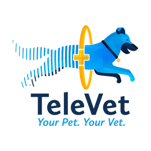 Austin's Televet Lands $2 Million in Funding